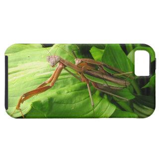 Piggyback Mantis ~ iPhone 5 CaseMate Vibe iPhone SE/5/5s Case