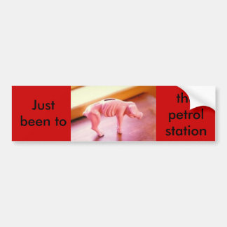 piggybank, Just been to the petrol station. Car Bumper Sticker