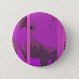 pigi buttom button