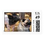 Piglet and Pug Love by The Sophie Club Postage