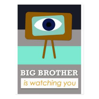 Piglet Brother is watching you, scandinavian art Postcard