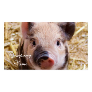 Piglet Double-Sided Standard Business Cards (Pack Of 100)