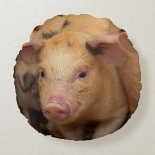 """""""Piglet"""""""
