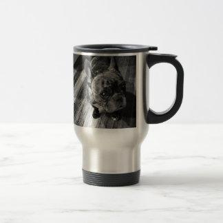 Piglet dog piglet love perra cutie mugs
