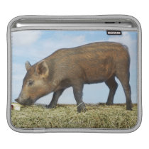 Piglet Eating Sleeve For iPads