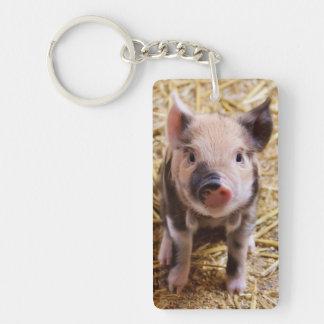 Piglet Rectangular Acrylic Keychains