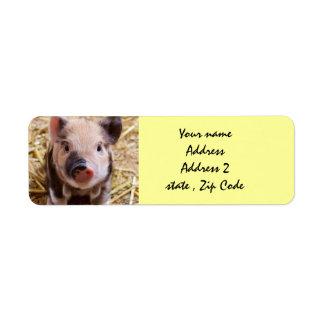 Piglet Return Address Labels