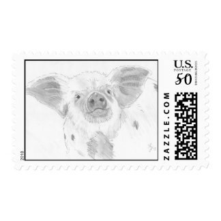 piglet pencil drawing postage stamps