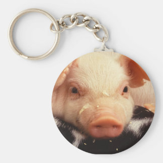 Piglet Pig Adorable Face Snout Basic Round Button Keychain