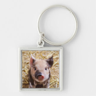 Piglet Silver-Colored Square Keychain