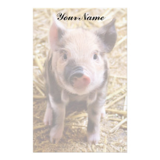 Piglet Personalized Stationery