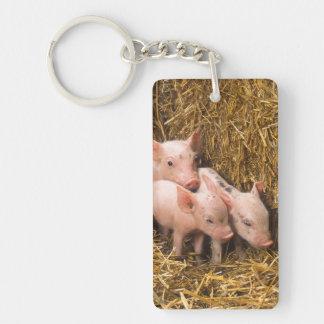 Piglets Double-Sided Rectangular Acrylic Keychain
