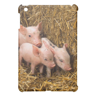 Piglets Cover For The iPad Mini