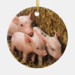 Piglets Double-Sided Ceramic Round Christmas Ornament