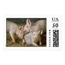Piglets Postage
