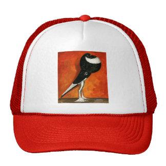 Pigmy Pouter Black Pied Trucker Hat