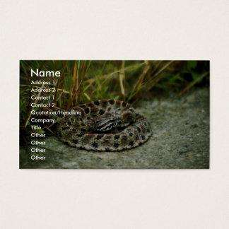 Pigmy Rattlesnake Business Card