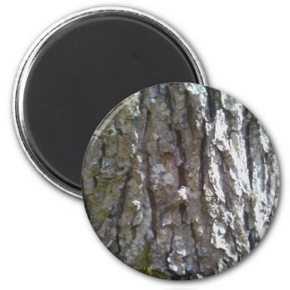 Pignut Hickory Tree Bark Magnet