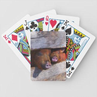PigPen Pair Peeking Piggies Bicycle Playing Cards