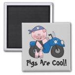 Pigs Are Cool Fridge Magnet