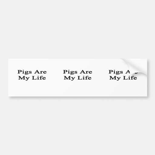 Pigs Are My Life Bumper Stickers