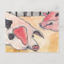 Pigs at the County Fair Postcard
