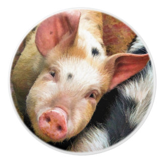 PIGS CERAMIC KNOB