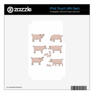 pigs decals for iPod touch 4G
