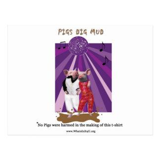 Pigs Dig Mud Postcard