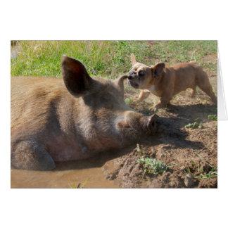 Pigs ear greeting card