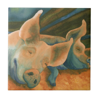 Pigs, Hogs Tile