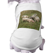Pigs in a Field Dog T Shirt