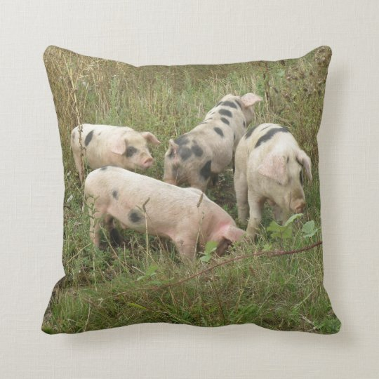 Pigs in a Field Pillow