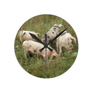 Pigs in a Field Wall Clock