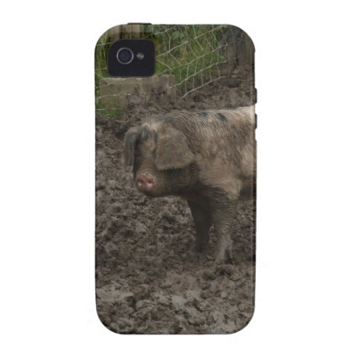 Pigs in mud vibe iPhone 4 cases