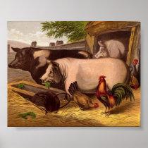 Pigs in the Barnyard Poster