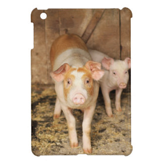 Pigs iPad Mini Case