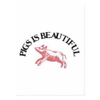 Pigs is Beautiful Postcard