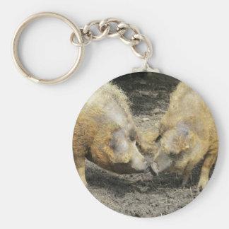 Pigs Keychain/Keyring Basic Round Button Keychain