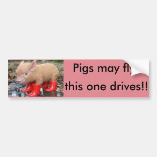 pigs may fly bumper sticker!! (very funny) bumper sticker
