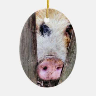 PIGS CHRISTMAS TREE ORNAMENT