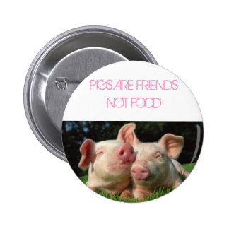 pigs, PIGS ARE FRIENDS NOT FOOD Pinback Button