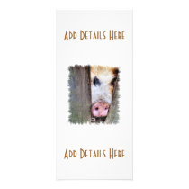 PIGS RACK CARD