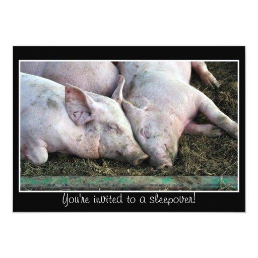 Pigs sleeping, sleepover invitation