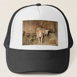 Pigs Trucker Hat