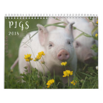 Pigs Wall Calendar - Smile in 2018