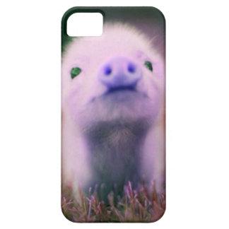 Pigsy púrpura funda para iPhone SE/5/5s