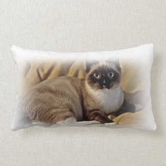 Pika-a-Choo Snowshoe rescue Kitten throw pillow