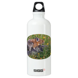 pika and flowers SIGG traveler 0.6L water bottle