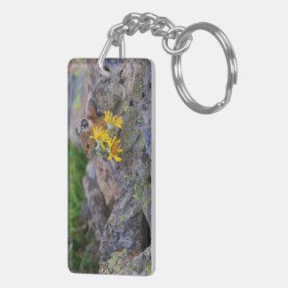 pika Double-Sided rectangular acrylic keychain